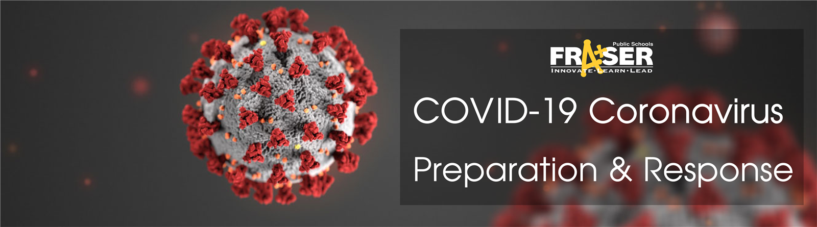 COVID 19 preparation and response